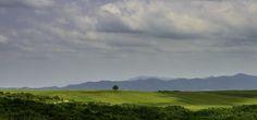 Kakheti fields by Vladlen Tsiskarishvili on 500px
