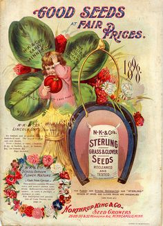 """""""Northrup King & Co. - Sterling Grass And Clover Seeds, Glossy Art Print Taken From A Beautifully Illustrated Vintage Seed Catalogue Or Seed Packet Cover. Vintage Labels, Vintage Cards, Vintage Paper, Vintage Dress, Vintage Posters, Garden Catalogs, Seed Catalogs, Seed Illustration, Gardens"""