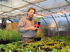"""""""We have developed a freely available phone app to optimize pesticide spray applications based on weather and spray settings."""""""