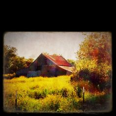 Gatesville, Texas - sooo wanting to shoot some cool old barns.
