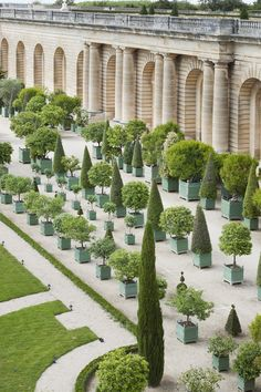 the history of versailles citrus planter boxes when you think of louis xiv you automatically picture the palace of versailles with its perfectly manicured gardens fountains and the iconic versailles c - The world's most private search engine Planter Box Designs, Planter Boxes, Louis Xiv, Ludwig Xiv, Versailles Garden, Chateau Versailles, Formal Garden Design, Grand Parc, Versailles
