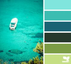color escape -- all my favorite colors in one palette...