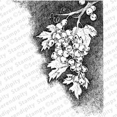 Check out the deal on Grapes at Serendipity Stamps Craft Stamps, Serendipity, Check, Crafts, Manualidades, Handmade Crafts, Craft, Arts And Crafts, Artesanato