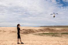 PowerEgg Camera Drone #Camera, #Drone, #Fly