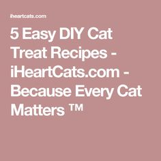 5 Easy DIY Cat Treat Recipes - iHeartCats.com - Because Every Cat Matters ™