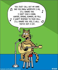 June is National Cat Adoption month and kitten season is in full swing! They may not come when you call them but you know you love them anyway. Funny Animal Memes, Funny Cats, Funny Animals, Cute Animals, Animal Humor, Funny Memes, Animal Antics, Hilarious, Funny Cartoons