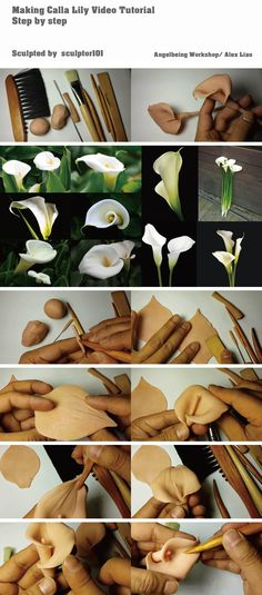 Making Calla Lily Video Tutorial It's an 18 minutes video tutorial of making Calla lily, I actually took much longer time making it. Here is the link: YouTube:  https://www.youtube.com/watch?v=Y8AHgvD4WXw&feature=youtu.be  The video shown how to make two different shapes of Calla Lily from the spadix, petals to the stems etc step by step.   Alex Liao