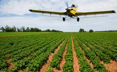 This website is intended to be an informational resource on the use of UAVs(Unmanned Aerial Vehicle) and drones for farmers and farming.