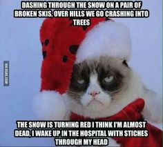 """Me: Merry Christmas, Grumpy Cat Grumpy Cat: What""""s so merry about it / / (<<<<<lol Grumpy Cat Quotes, Funny Grumpy Cat Memes, Funny Animal Jokes, Funny Animal Pictures, Cute Funny Animals, Funny Cute, Funny Memes, Hilarious, Grump Cat"""