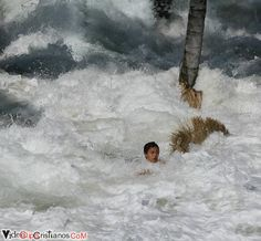Indonesia Earthquake/Tsunami, 2004. Another victim tries to cling onto a tree for dear life.