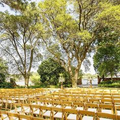 floral: @ishafoss | image: @djschwartz13 #ishafossdesign #hermitagefoundation #wedding #ceremony by ishafoss