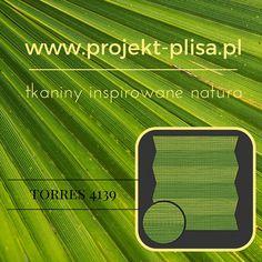 #projektplisa #cosimo #plisa #okno