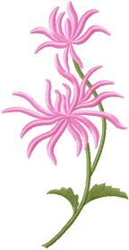 Chrysanthemum free machine embroidery design. Machine embroidery design. www.embroideres.com