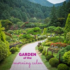 Garden of the Morning Calm is one of the most beautiful places in South Korea and well worth the visit! | LifeOutsideOfTexas.com