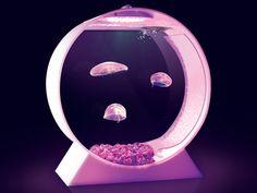Desktop Jellyfish Tank by Alex, via Kickstarter.