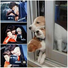 There is no difference | Eunhyuk, Donghae & Kyuhyun X] Super Junior