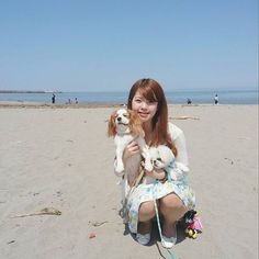 みんな仲良し  #愛犬 #多頭飼い #キャバリア #キャバリアキングチャールズスパニエル #ブレンハイム #ペキニーズ #鼻ぺちゃ #puppy #cavalier #cavalierkingcharlesspaniel #pekingese #peki #dog #dogstagram