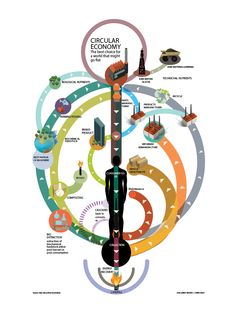 A simple graphic showing how the Circular economy works, and how it could benefit us.
