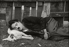 """Circa Charlie Chaplin in """"A Dog's Life"""". Charlie Chaplin, Photo Vintage, Vintage Dog, Famous Dogs, Famous People, Emotional Pictures, Charles Spencer Chaplin, Vevey, Silent Film Stars"""