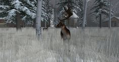 https://flic.kr/p/21Y9Aqm | Fallow Deer-015 | The Fallow Deer at Binemust maps.secondlife.com/secondlife/Binemust/132/156/717   Thank you for such beauty, dear Bine Rodenberger!