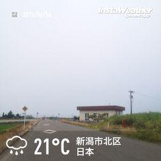 おはようございます! 今朝はグレー一色です〜♪