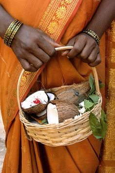 Coconut Offering , India