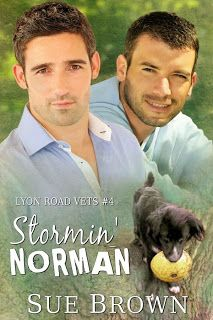 Fortune Favours the Romantic: Flash Giveaway - Stormin' Norman