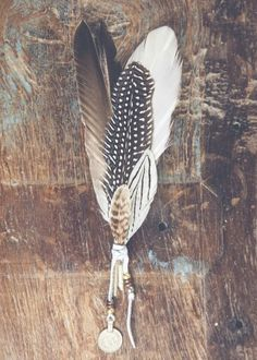 Beautiful Roost Floating Decorative Natural Feather Ornaments | Feathers, Ornament  And Craft Awesome Ideas
