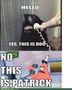 no this is patrick Patrick Meme, Hello Yes, Spongebob, Funny Things, Haha, Cartoons, Funny Memes, Puppies, Humor