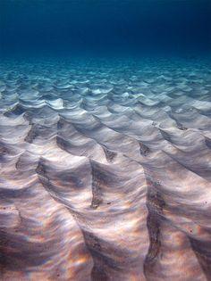 sand waves on the ocean floor