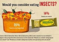 With a high protein content and appearance at a Justin Timberlake party, insect food suppliers are trying hard to position it as the next sushi. Edible Insects, Food Suppliers, Food Waste, Survival Kit, Food Processor Recipes, Protein, Snacks, Eat, Tips