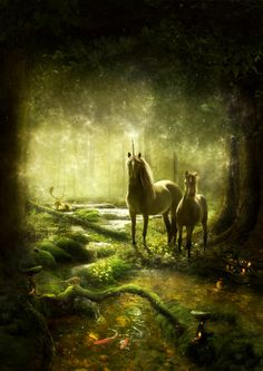 Unicorns at a Mystical Forest. Fantasy Unicorn, Unicorn Art, Magical Creatures, Fantasy Creatures, Beautiful Creatures, Clydesdale, Fantasy World, Fantasy Art, Unicorns