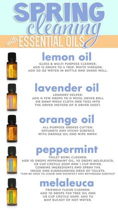 Spring cleaning with Essential Oils. Lemon, Lavender, Orange, Peppermint and Melaleuca. All great oils and many uses from cleaning glass to cleaning floors and even toilet bowls! www.hayleyhobson.com