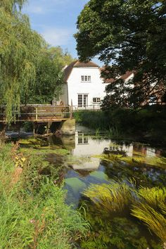 "https://flic.kr/p/Ljqgxj | ""Mill on the Stour"" | On the river Stour @ Wye…"
