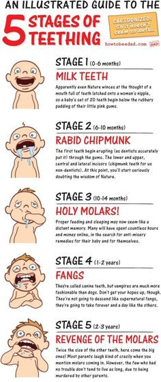 The 5 stages of Teething - An illustrated guide lol