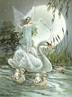 ...on the wings of a swan...