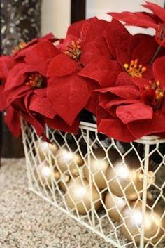A estas alturas todos sabemos ya que la Flor de Pascua es la flor por excelencia de la Navidad, por ello, es una de las más adecuadas para dar un toque muy