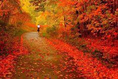 The romance of Autumn biking