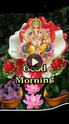 Good Morning Clips, Good Morning Gif, Good Morning Picture, Good Morning Flowers, Good Night Image, Morning Pictures, Good Morning Wishes, Morning Messages, Wednesday Morning Quotes