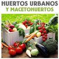 ALQUILER DE HUERTOS EN MÁLAGA Huertos urbanos y macetohuertos