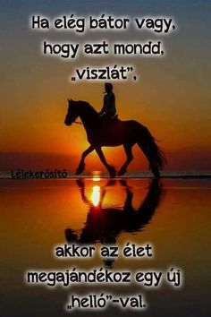 Image about sunset in Animales by Syl Valdi on We Heart It Pretty Horses, Horse Love, Beautiful Horses, Animals Beautiful, Cute Animals, Beautiful Sunset, Wild Animals, Pretty Animals, Majestic Animals