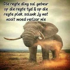 Hou moed Afrikaanse Quotes, Self Esteem Quotes, Goeie Nag, Inspirational Qoutes, Brother Quotes, Positive Thoughts, Bible Quotes, Lekker Dag, Resin Furniture