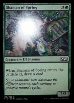 Shaman of the Spring