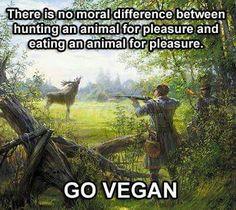 reason to go #vegan- So true!!