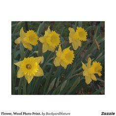 Flower, Wood Photo Print. Wood Wall Art