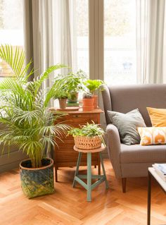 Such a Nice green corner Deco Furniture, Outdoor Furniture Sets, Home Decor Bedroom, Living Room Decor, Moraira, Banquette, Inspired Homes, Decoration, Home And Living