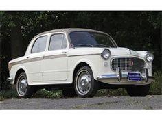 1959 Fiat 1100 #car