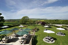 The View! Sussex Ox Places To Eat, Great Places, Ox, The Locals, Brewery, Golf Courses, Thor, Beef