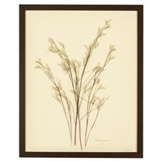 French Country Wildgrass Print Botanical Floral Framed Wall Art | Kathy Kuo Home