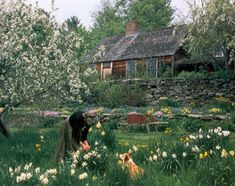 Tasha Tudor in her garden with her corgi